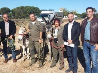 Servirán de apoyo a las tareas de desbroce en el entorno del espacio natural de Doñana