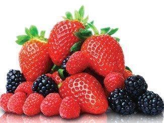 Las exportaciones de frutos rojos han experimentado un incremento del 23,6% en la presente campaña