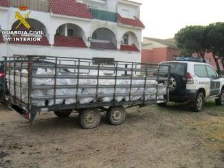 En total se han aprehendido 2.100 kg de piñas y las herramientas que utilizaban