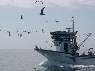 """La inclusión de la palabra """"pesca"""" en la nomenclatura de la Cartera ministerial de Tejerína fue una reivindicación de CEPESCA"""