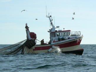 La normativa afecta a la construcción, modernización y regularización de la flota pesquera