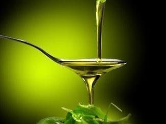 Andalucía líder en exportación de aceite de oliva
