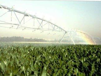 Se abordará los nuevos cultivos que la conversión en regadío puede facilitar en la zona