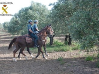 La Guardia Civil ha relacionado hasta 14 personas con los robos en el campo gracias a la colaboración ciudadana