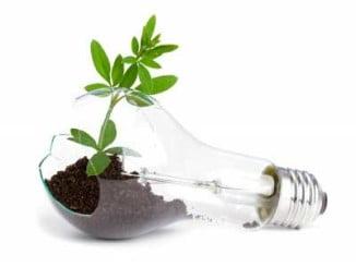 Un plan de gestión energética integral implantado por la empresa Saltes Energy es el responsable del ahorro