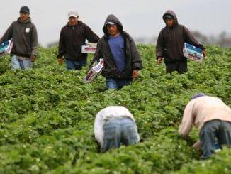 En la localidad costera de Cartaya convive un importante núcleo de población inmigrante