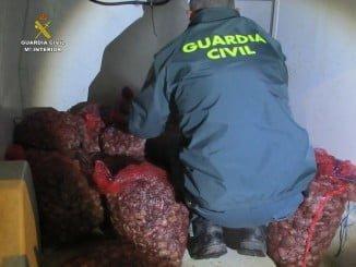 La mercancía intervenida ha sido puesta a disposición de la Delegación de la Consejería de Pesca en Huelva
