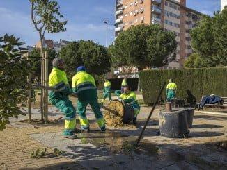 Desde el Servicio Municipal de Parques y Jardines se ha aumentado la cobertura vegetal de la ciudad