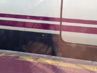 En la actualidad los trenes que llegan a Huelva no son accesibles y desde el andén al tren hay una distancia difícil de salvar a mayores y discapacitados