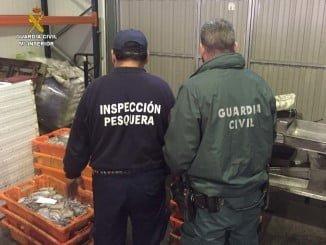 Inspección pesquera interviene en Lepe pulpo inmaduro por valor de 17.500 €