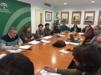 Reunión del Consejo, presidido por la delegada de Medio Ambiente