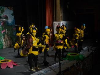 No podían faltar las abejas en el Carnaval de Ayamonte