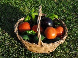 Ciudadanos apuesta por la agricultura ecológica