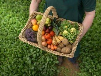 La producción ecológica es una apuesta estratégica de Andalucía