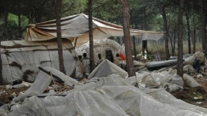 Unas 2.000 personas pernoctarán en los asentamientos de la provincia durante la campaña agrícola