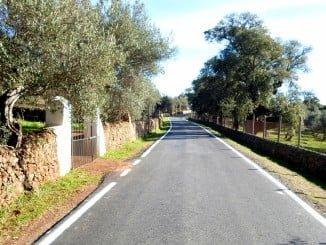 Estos caminos son utilizados por los agricultores y ganaderos para acceder a sus explotaciones agrícolas