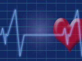 las enfermedades del sistema circulatorio se mantuvo como la primera causa de muerte