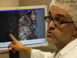 El investigador del CSIC Josep Maria Trigo, en su laboratorio