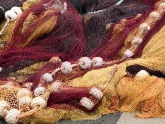Interesa sobremanera cómo afectará el Brexit a la Pesca en los estados miembros