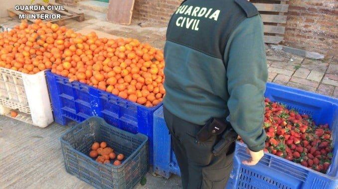 El Gobierno quiere evitar la comercialización de productos agrarios robados