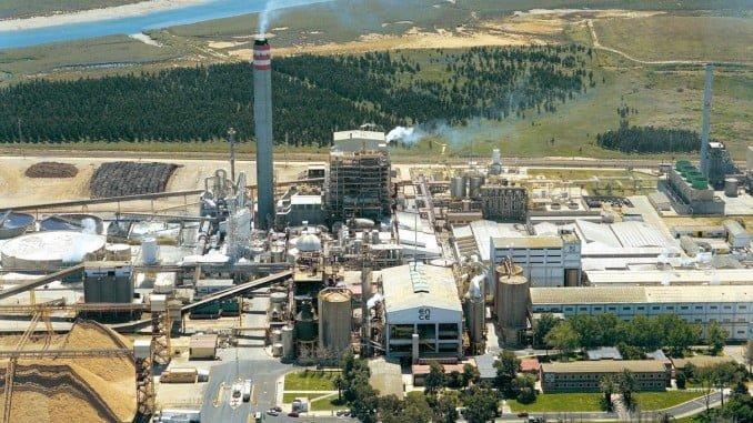 Huelva cuenta con dos plantas de biomasa, una de ellas, la más importante de España
