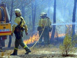 Efectivos del Infoca extinguen un incendio en el término municipal de Gibraleón