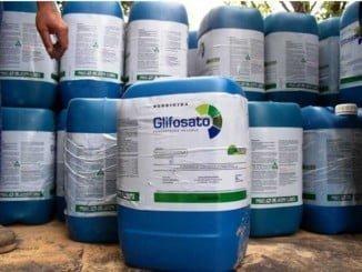 Las entidades del sector productivo agrícola integrantes de ALAS han firmado un manifiesto en defensa del glifosato  que ahora la ECHA ha catalogado de no cancerígeno