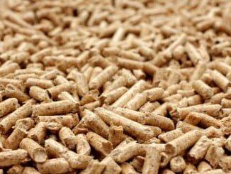La fábrica tendrá una capacidad para producir más de 75.000 toneladas de pellets