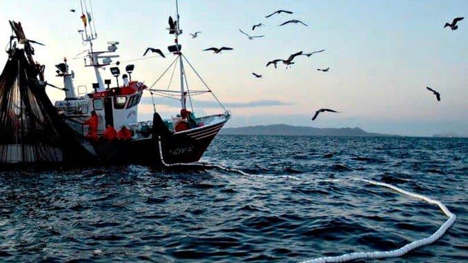 España ha conseguido en los últimos cinco años que las posibilidades de pesca se hayan incrementado en prácticamente un 100& en las especies más relevantes