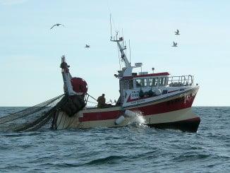 Rl acuero pesquero, que incluye la modalidad de mariscos, es fundamental para la flota onubense
