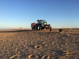Limpieza en la playa de El Espigón