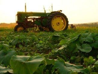 El paro ha aumentado en agricultura, con 1.429 desempleados más