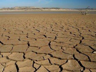UPA califica esta sequía como una de las peores en 30 años