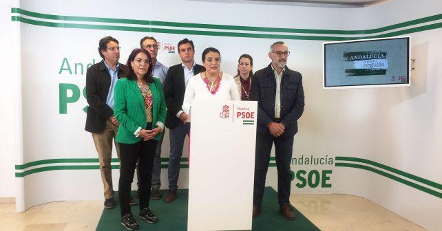 Alcaldes y portavoces socialistas del entorno del Parque Nacional de Doñana en rueda de prensa