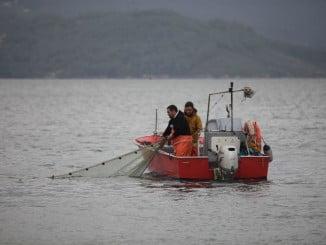 Pescando con el xeito