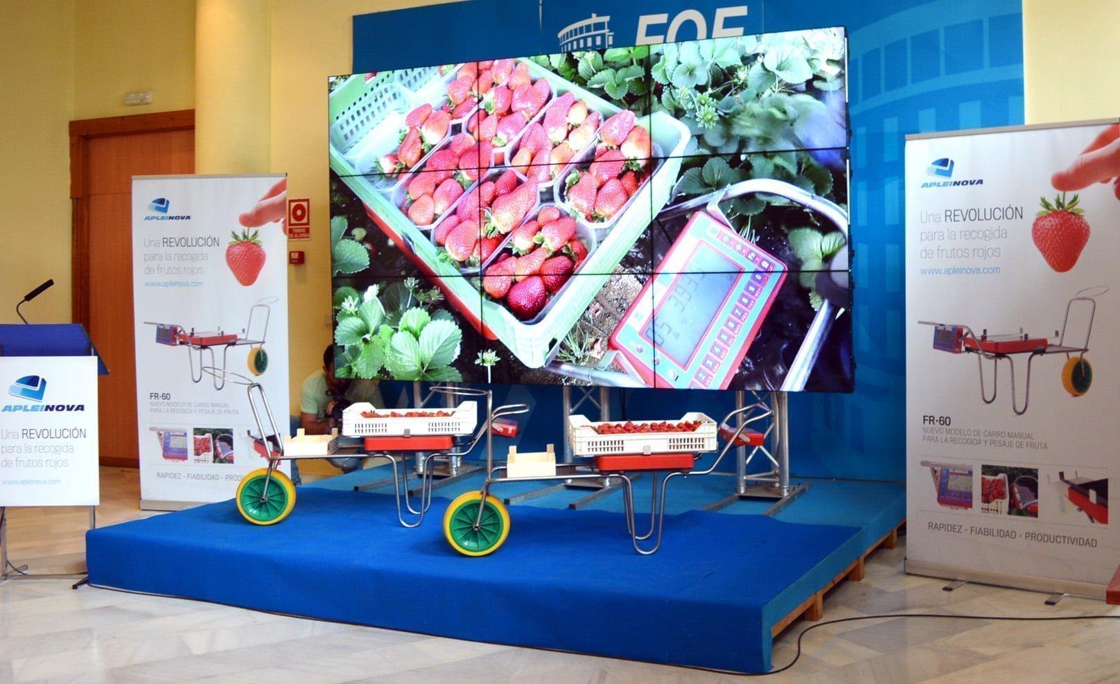 El nuevo sistema manual, con plataforma de recogida y pesaje de fruta