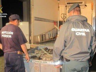 El pulpo ha sido intervenido en un dispositivo conjunto de la Guardia Civil e Inspección Pesquera