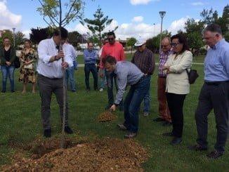 El consejero de Medio Ambiente y el alcalde de Huelva plantando un árbol