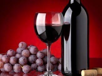 UPA cree que la legislación debe proteger al viticultor, que es clave para el sector del vino