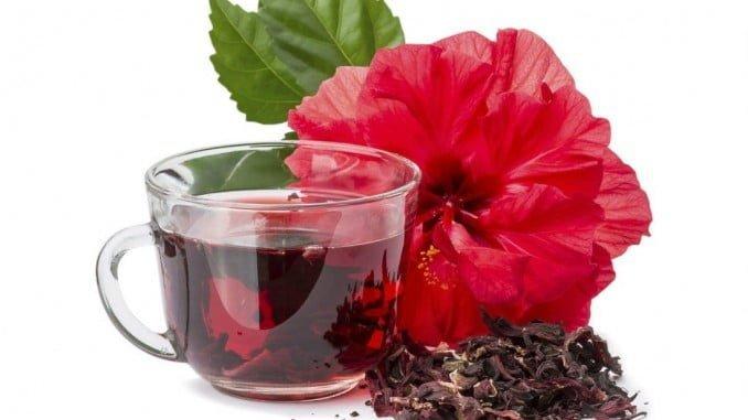 Las infusiones de Hibiscus tienen múltiples propiedades antioxidantes y ayudan a reducir calambres