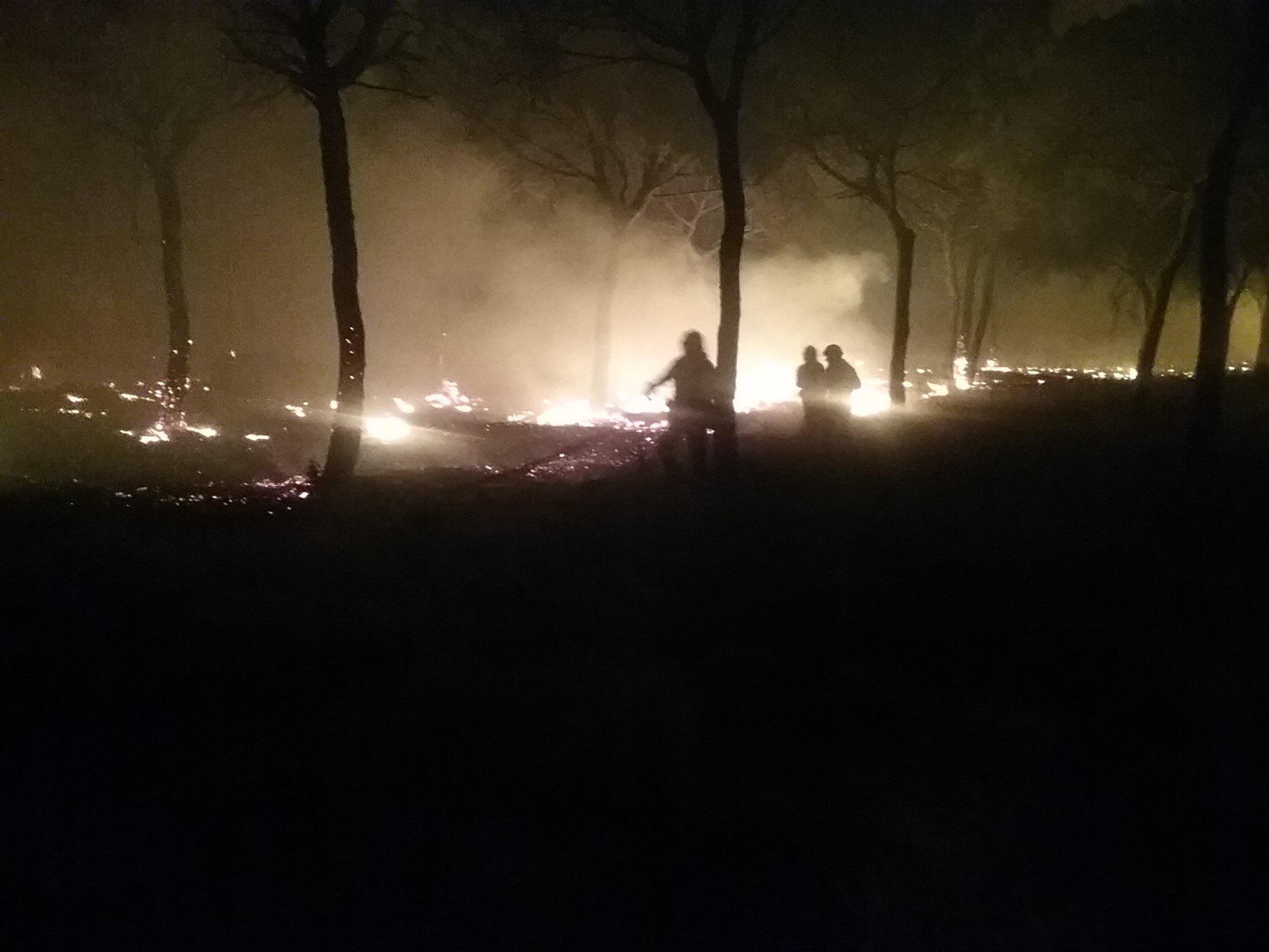 Los efectivos del INFOCA intentando que las llamas no siguieran avanzando.