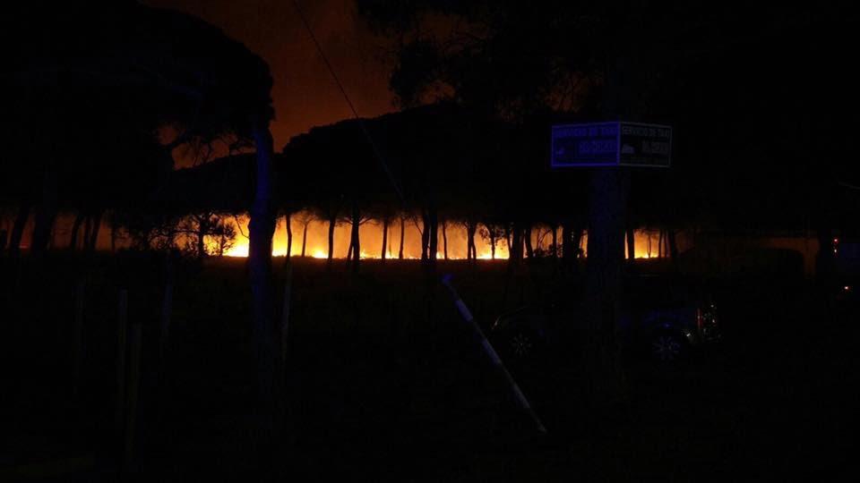 No hay manera de contener el fuego que llega de la zona de pinares a Mazagón.