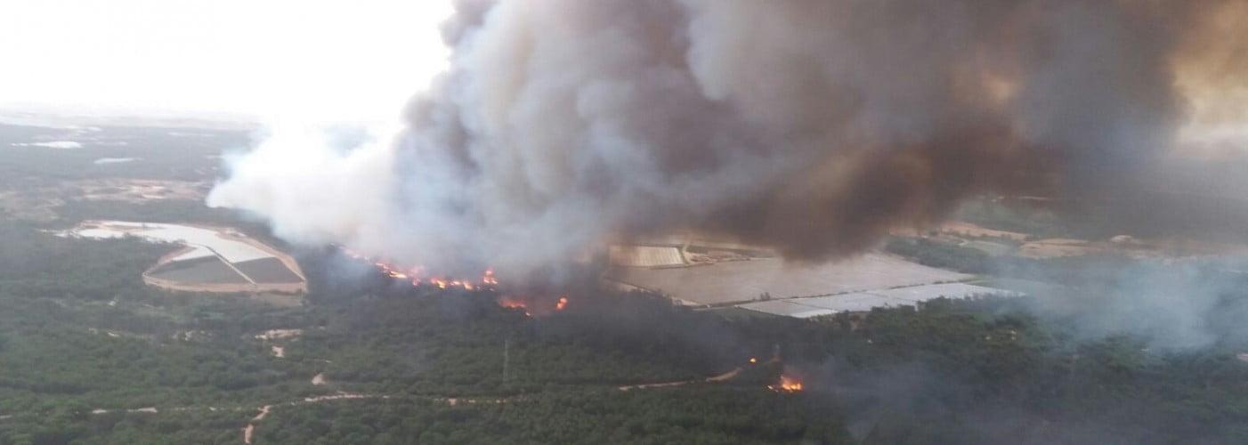 El incendio se ha originado en el paraje La Peñuela en el termino municipal de Moguer.