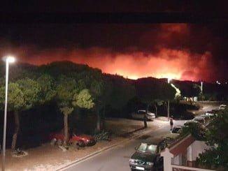 En la foto de Carlos Martin Vaz subida a twitter se aprecia la proximidad de las llamas a las urbanizaciones de Mazagón