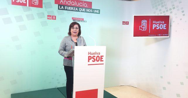 Ana Pérez, senadora socialista