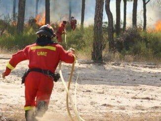 Bomberos de la Unidad Militar de Emergencias trabajando en Doñana