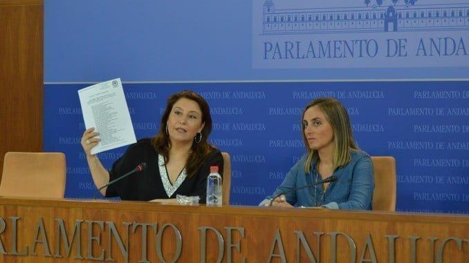 Carmen Crespo, portavoz del Grupo Parlamentario del PP Andaluz