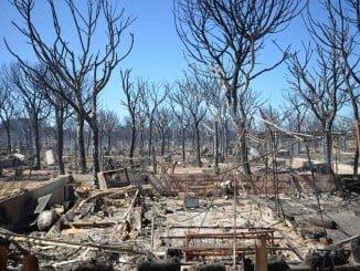 La Junta pedirá fondos europeos para la reforestación de la zona dañada por el incendio