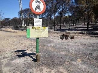 En marcha un mecanismo de participación para regenerar la zona afectada por el incendio