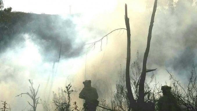 Bomberos del Infoca trabajando en la extinción del incendio en El Granado